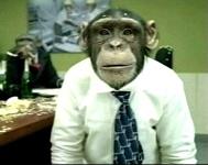 Excel Monkey.